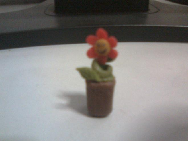 My very own sunflower